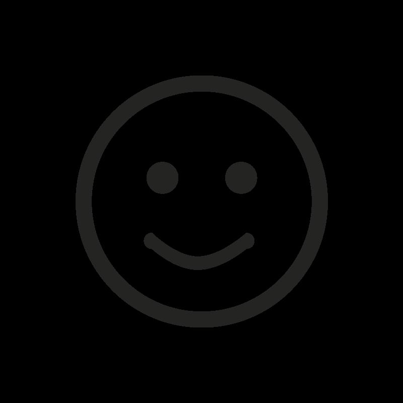 i-Ryde Icon kostenträgerfreundlich